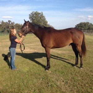 Nicole and Exporter enjoy a moment on his new farm, just three miles away from the TRF's Ocala facility.