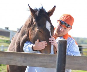 James river inmate with horse