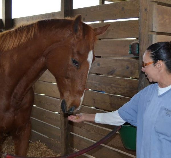 Lowell Correctional Institution - Thoroughbred Retirement